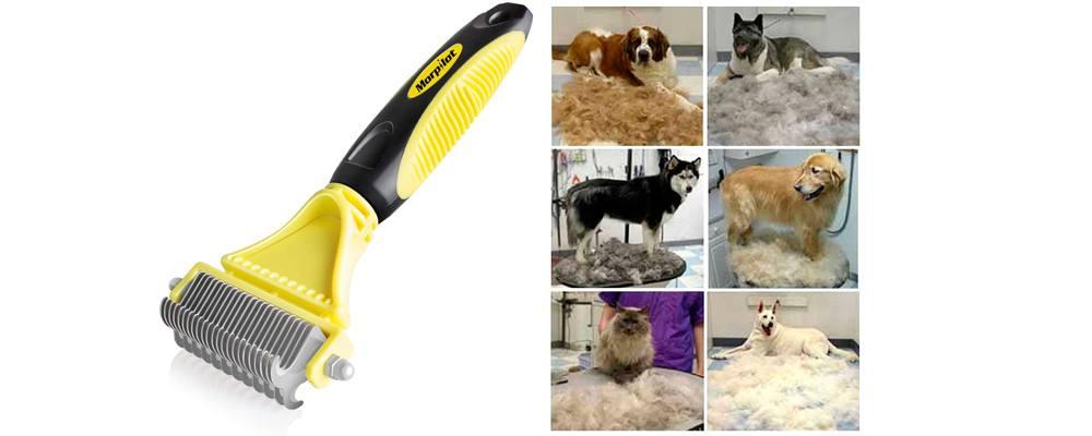 spazzola per cane e gatto